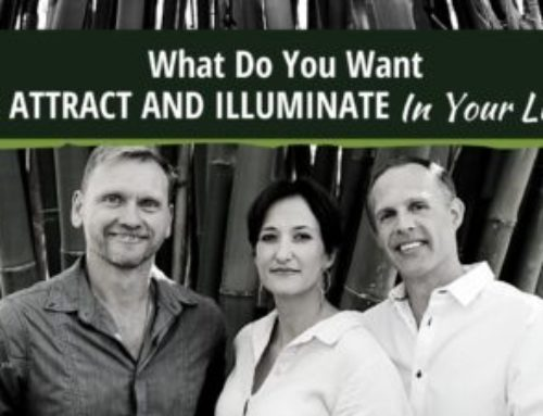 What Do You Want To Attract & Illuminate In Your Life